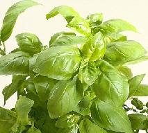 Pesto z pietruszką: pyszny sos ziołowy à la pesto